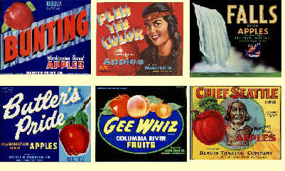 Some colorful apple labels.